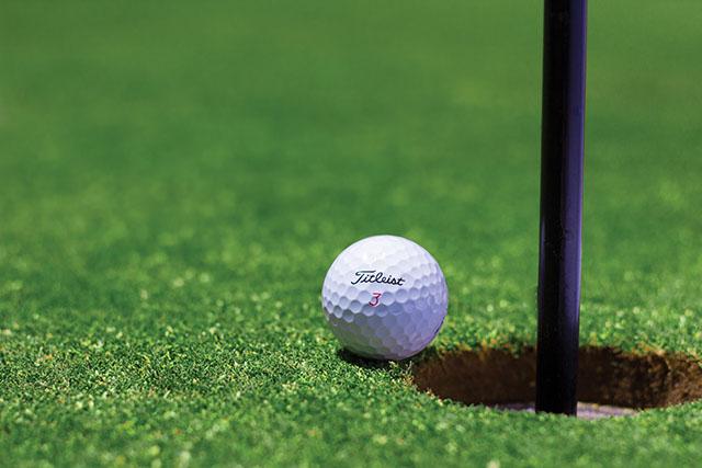 gym.my-golf-drivingrange-greens